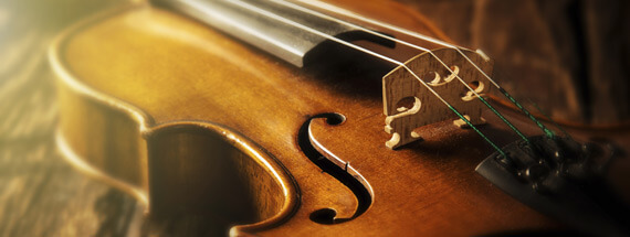 erwachsene-violine-b